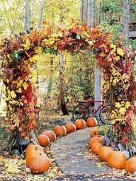 Fall Wedding Decor | Distinctive Mountain Events