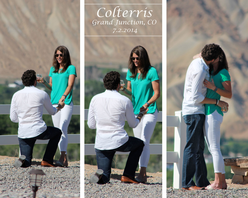 picture of a proposal collage