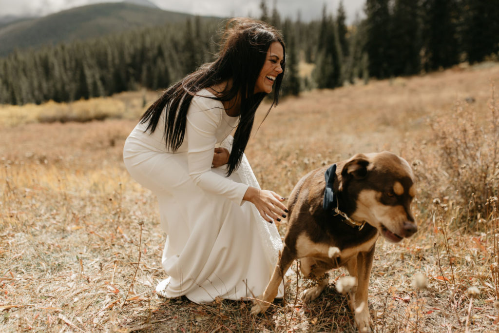 Picture of a bride and her dog