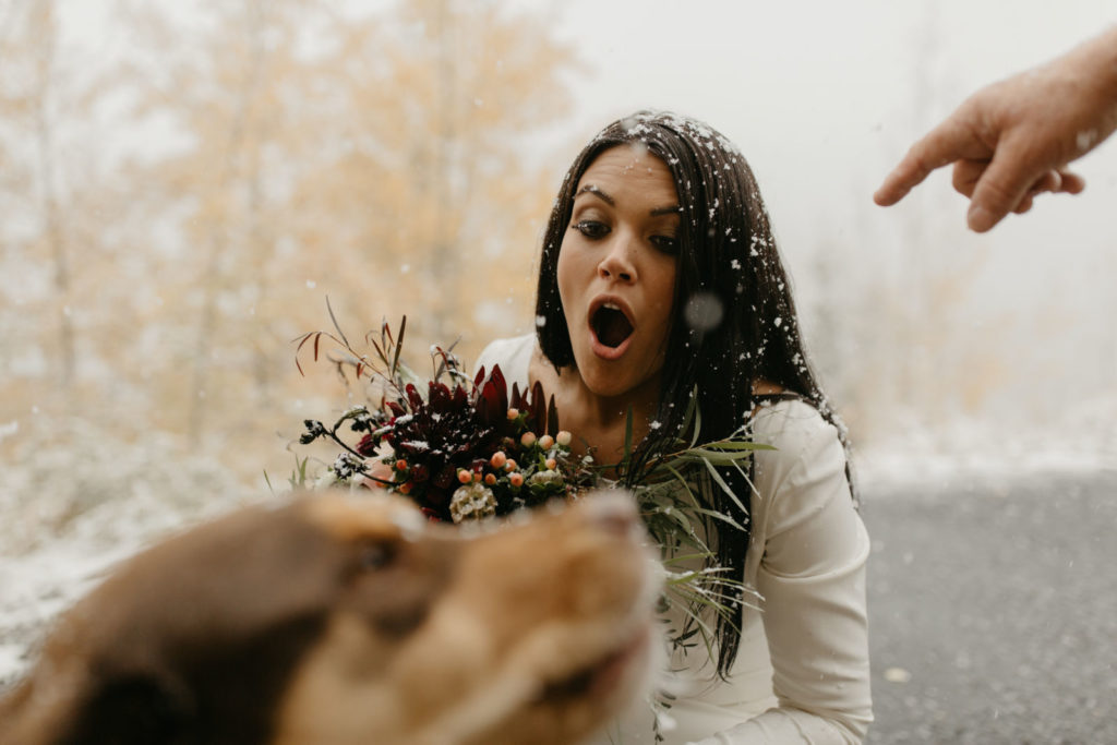 picture of a bride and dog